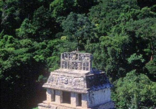 palenque-(3)