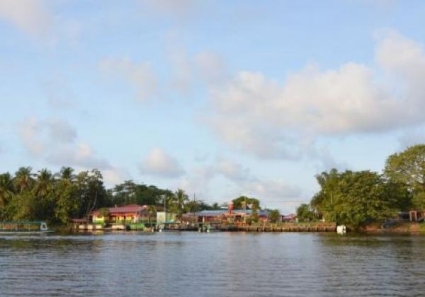 tortuguero-may-2012-rob-068.jpg