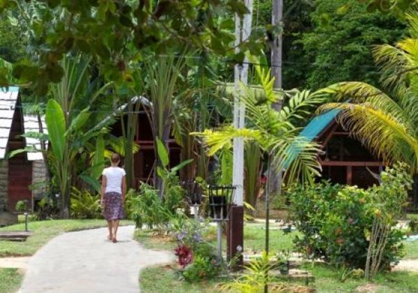danpaati-river-lodge
