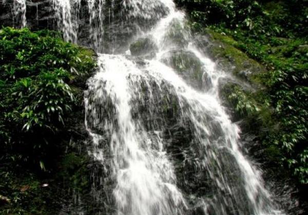 brownsberg-waterfal