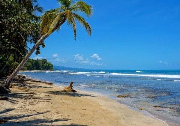 karibikstrand-puerto-viejo