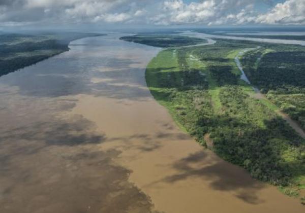 amazonas-von-oben
