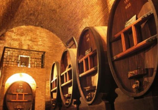 s-arg-mendoza-wine-01-©-sat-(ad).jpg