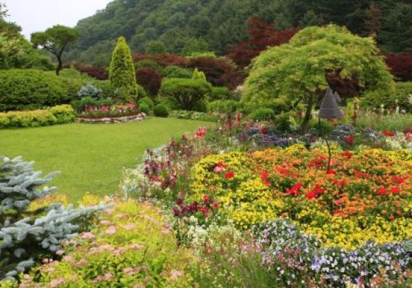 3511003201206059k-the-garden-of-morning-calm