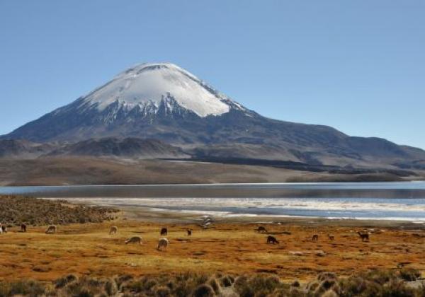 northern-chile.jpg