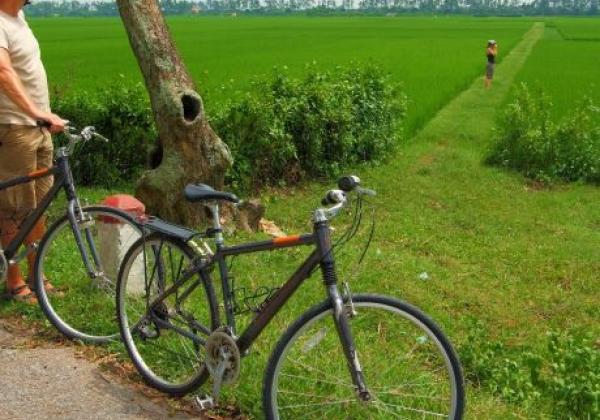 biking---rice-field.jpg