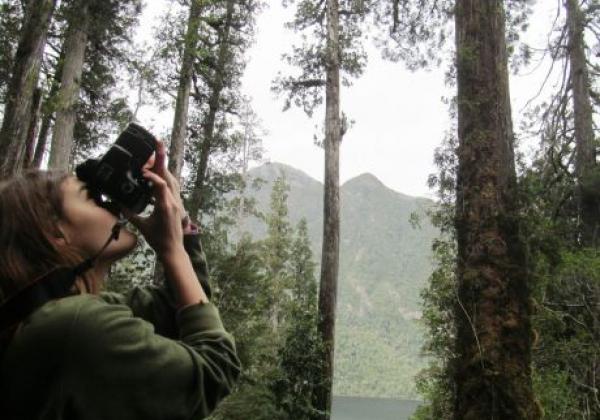 tag-4-bosque.jpg