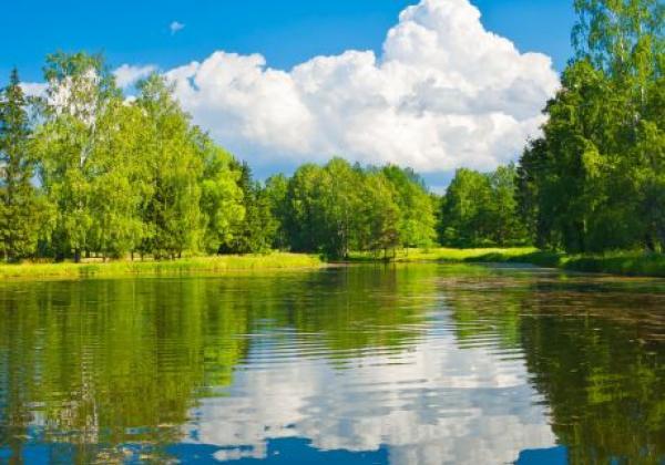 pavlovsk-park