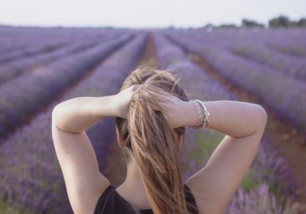 lavender-pixabay.com