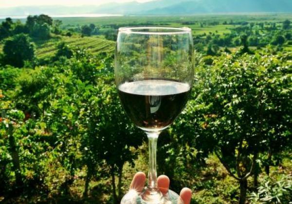 wine-2173239-1920-pixabay.com