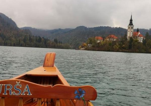 bled-vom-boot
