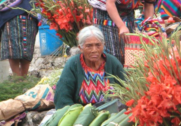 sih14n-chichi-market
