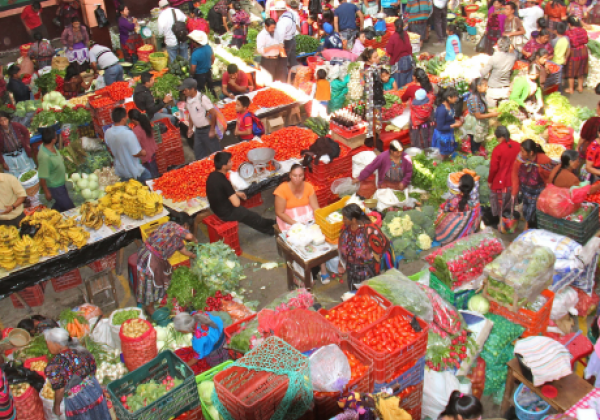 sihc11-chichi-market