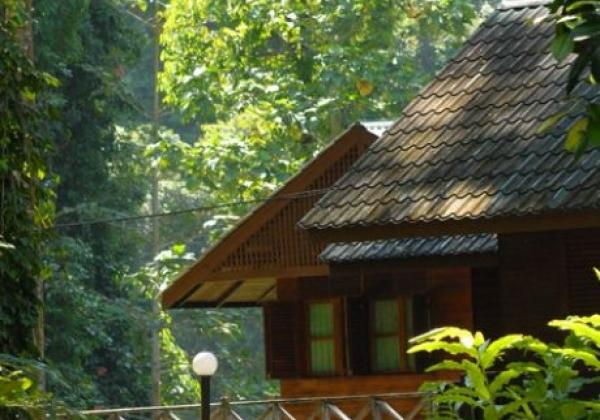 borneo-rainforest-lodge---standard-chalet