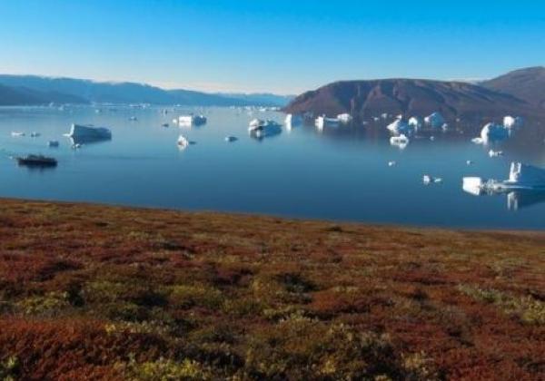 fjord-in-grönland.jpg