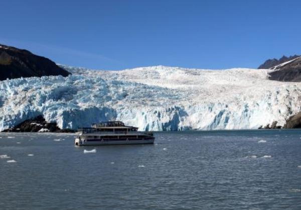 day-8---xl-day-13---kenai-fjords-tour-seward.jpg