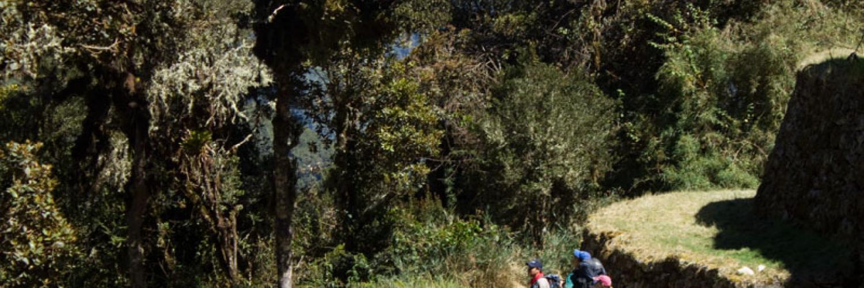inca-trail-