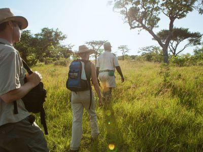 buschwanderung-in-südafrika