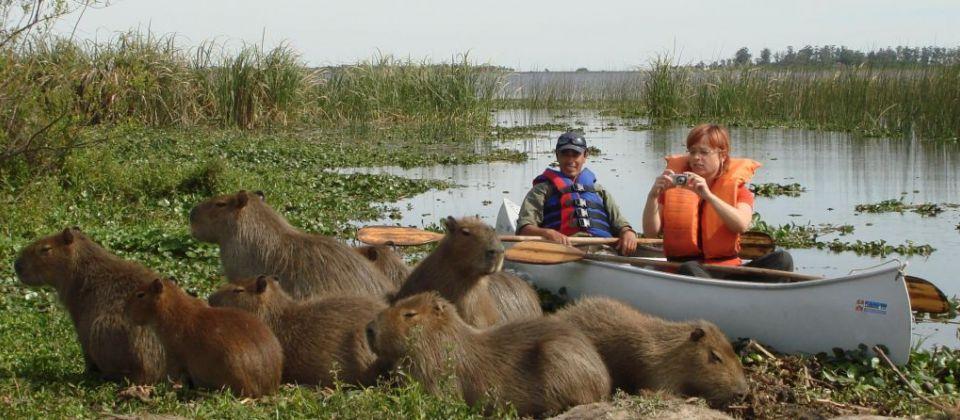 1338382181_canoe_safari.jpg