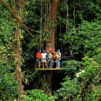 canopy-costa-rica