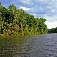 tortuguero-national-park