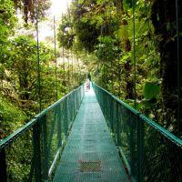 hängebrücken-in-monteverde-costa-rica