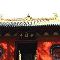 luoyang001