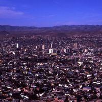 chihuahua-city