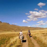 altiplano-peruvian.jpg