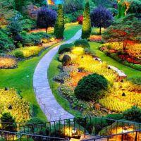 peradeniya-botonical-garden