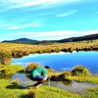 horton-plains-
