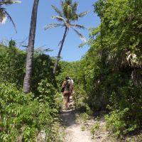 laguna-de-oviedo---lagoon,-barahona,-nature,-hiking,-flora,-faun