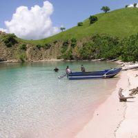 pink-beach--4.jpg