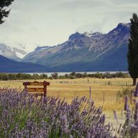 mw-patagonien-fte-cha-torres-tag-(4)