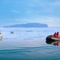 polar-bears-(1)