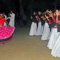 tharu-cultural-dance-show-01