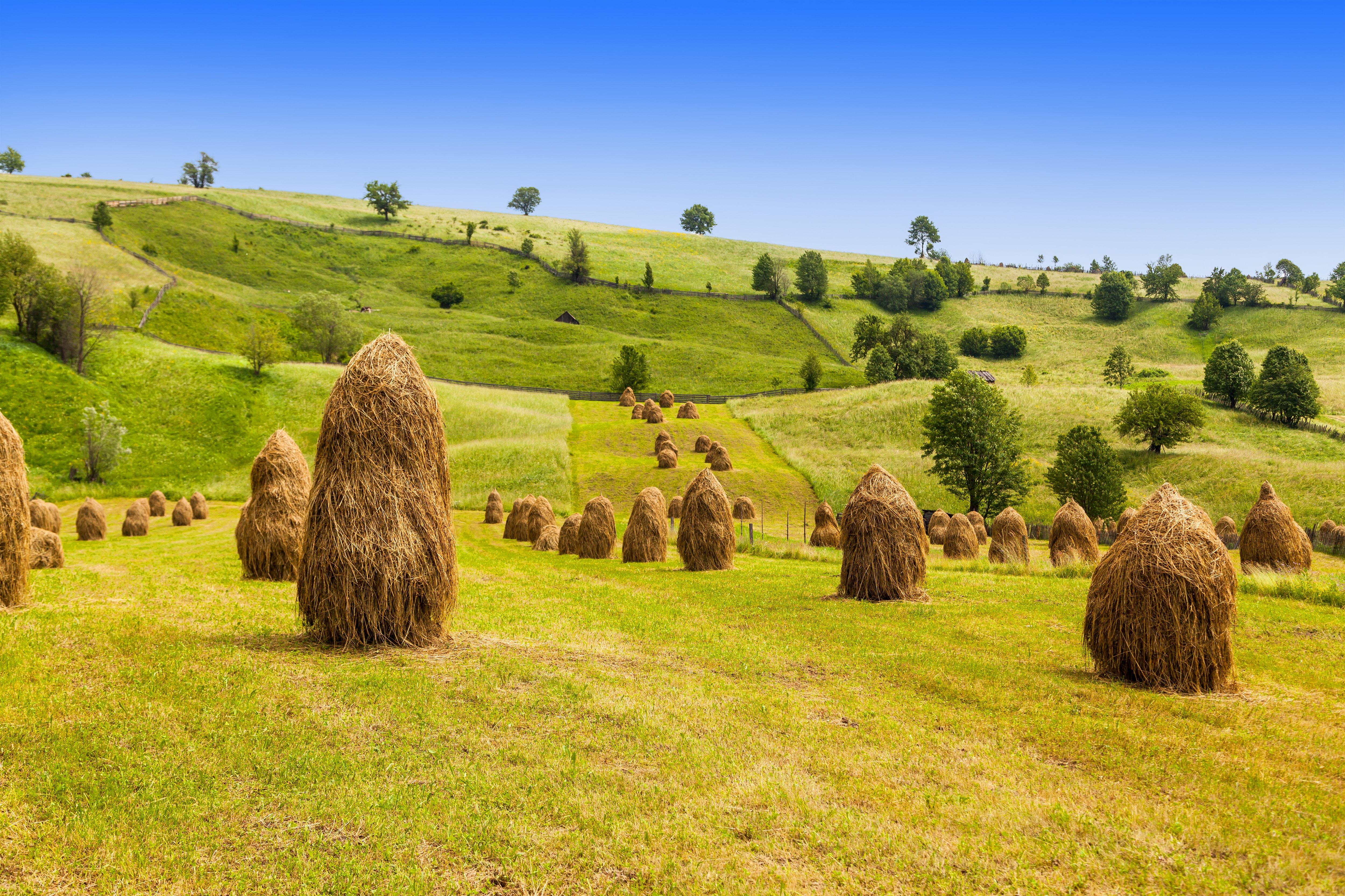 Ländlliches Rumänien