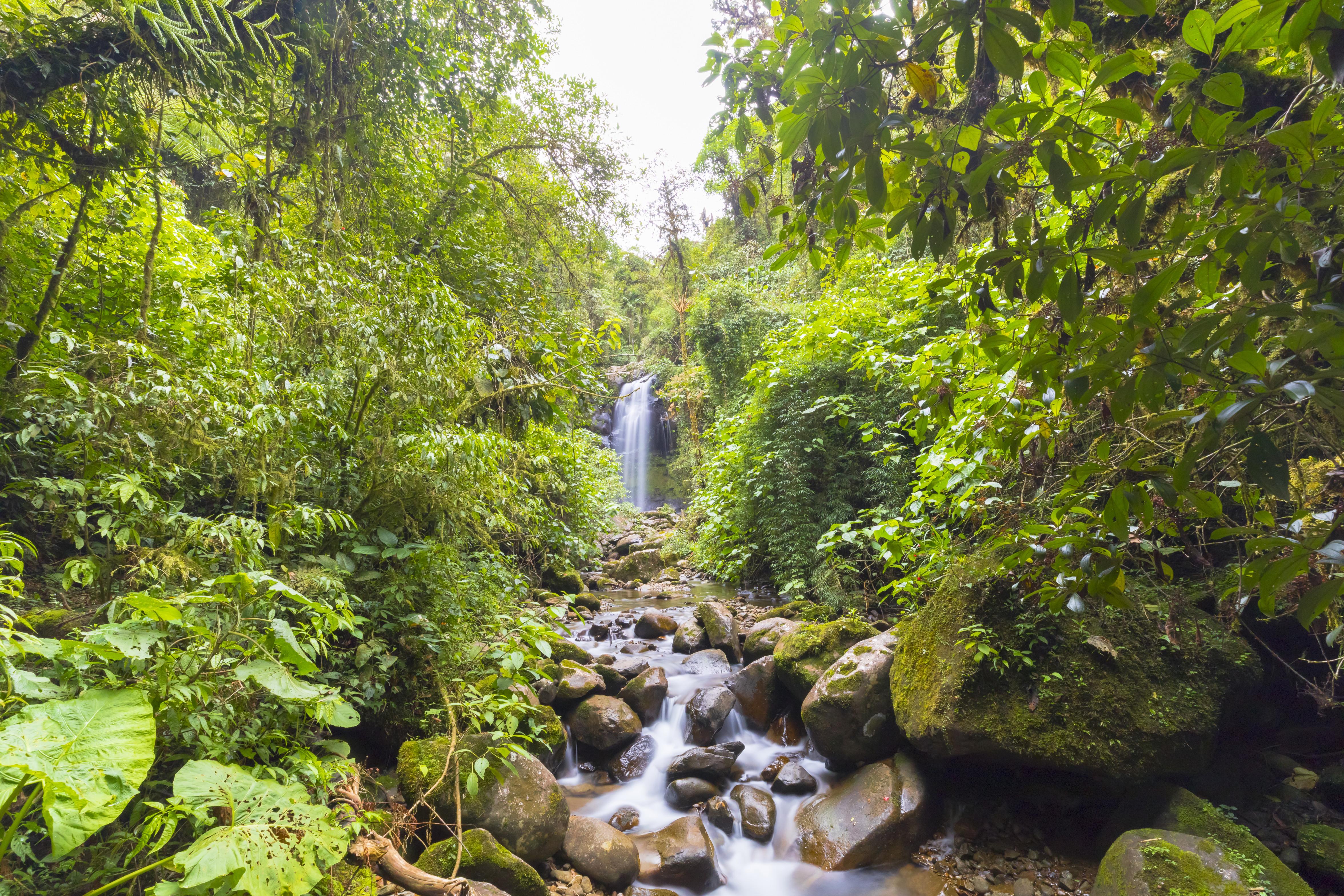 Boquete Wasserfall