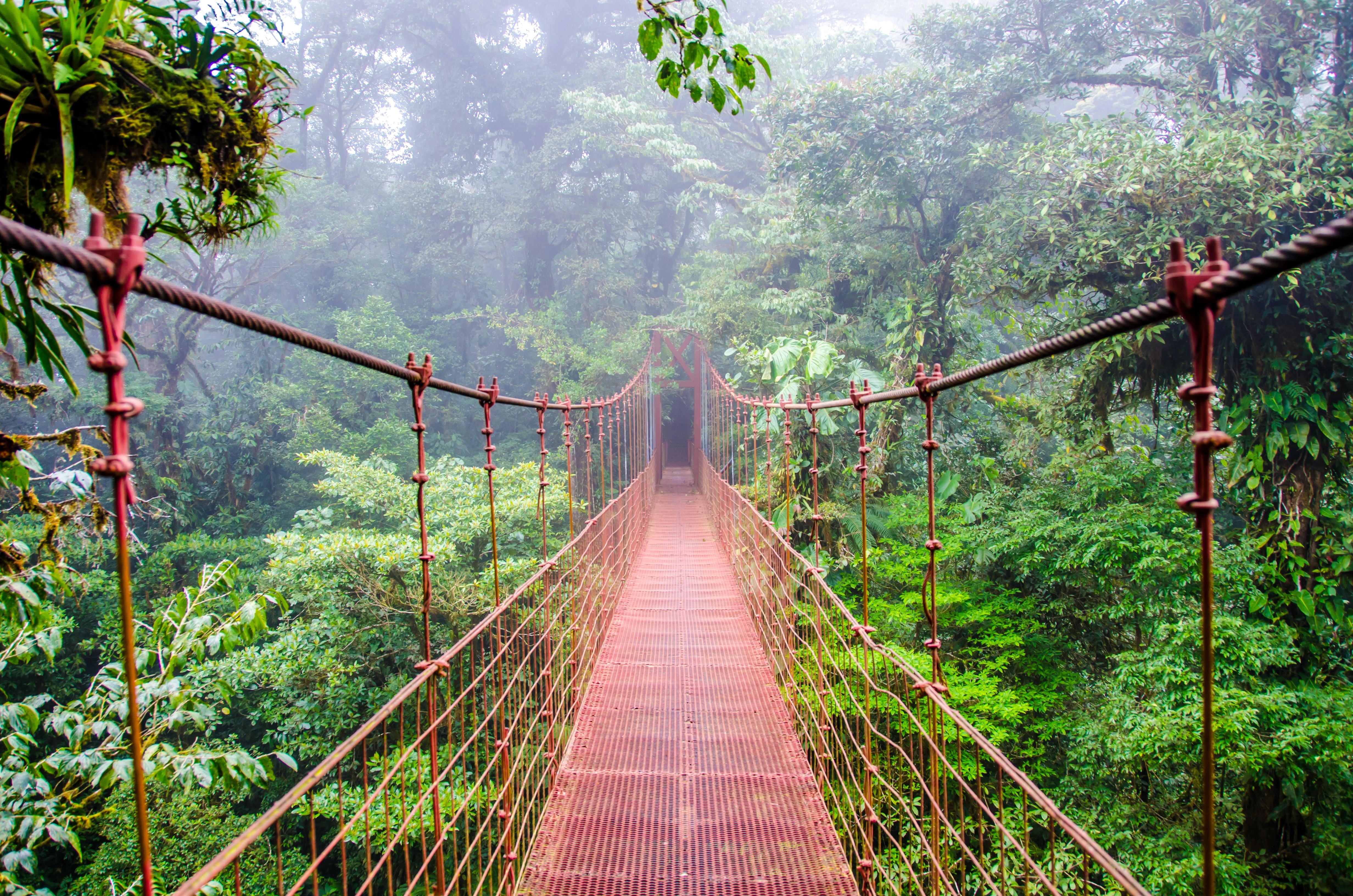 Monteverde Hängebrücken